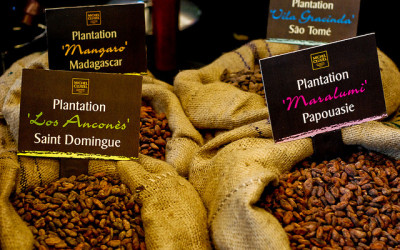 12 Ways to eat Cacao Beans
