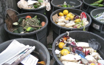 Why you should keep a Food Waste Diary