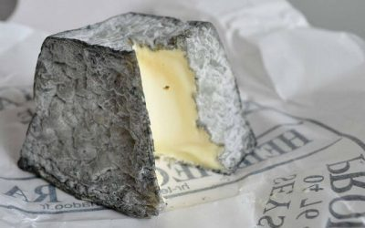 Valencay cheese with a wedge cut out to expose creamy interior
