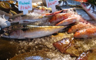 Is the fish on your plate safe to eat?